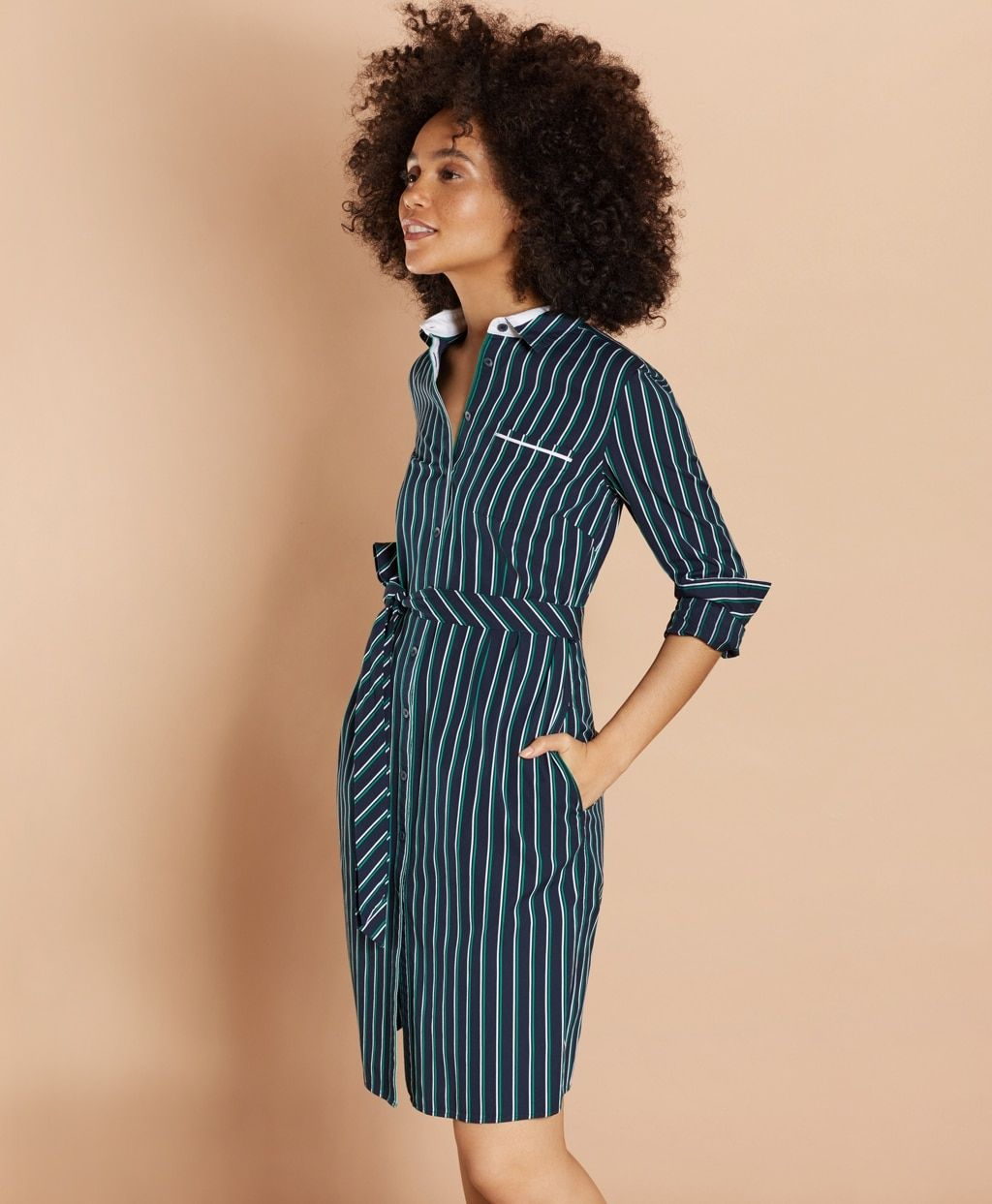 Striped Cotton Dobby Shirt Dress