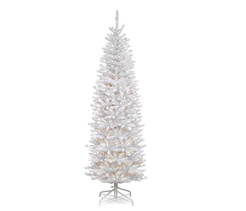 kingswood white fir pencil tree