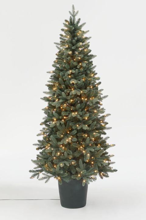 Skinny Christmas Tree.25 Slim Christmas Trees For Small Spaces Pencil Christmas