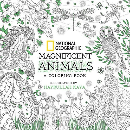 13 Best Adult Coloring Books 2020 - Cool Adult Coloring Books To Buy
