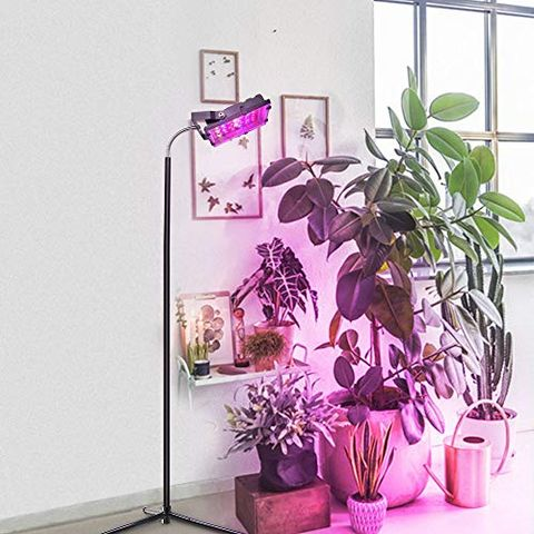 The 15 Best Grow Lights For Your Plants
