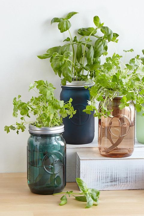 35 Best Housewarming Gift Ideas Unique Home Gifts They Ll Use