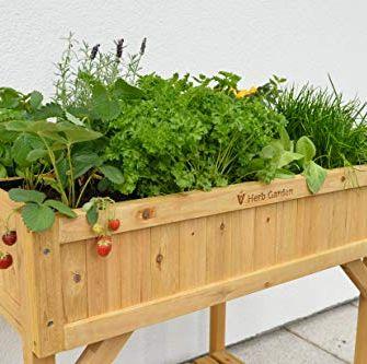 15 Best Raised Garden Beds Raised Bed Garden Kit