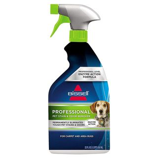 Professional Stain & Odor Remover
