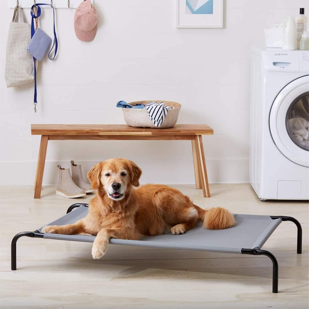 dog beds that keep dogs cool Cheaper Than Retail Price> Buy Clothing, Accessories and lifestyle products for women & men -