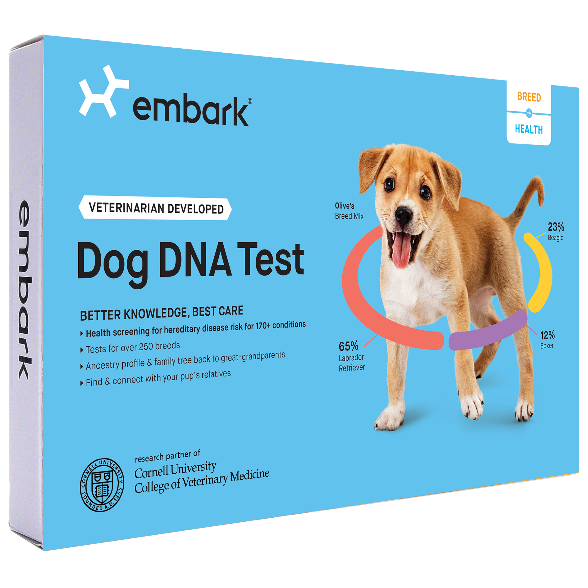 20 Best Pet Gifts For 2021 Unique Gifts For Dogs Cats