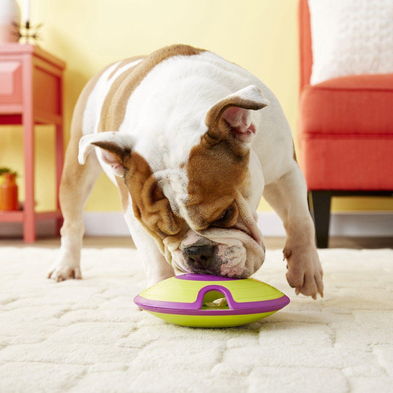 15 Best Interactive Dog Toys 2020 Fun Interactive Dog Feeder And Treat Balls