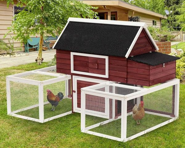 23 Best Chicken Coop Kits For Sale Cool Backyard Chicken Coops