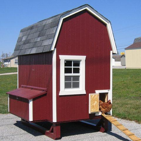 23 Best Chicken Coop Kits for Sale - Cool Backyard Chicken ...