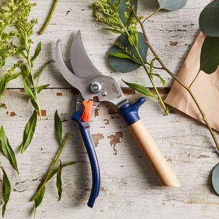 Opinel Hand Pruning Shears and Garden Knife Box Set