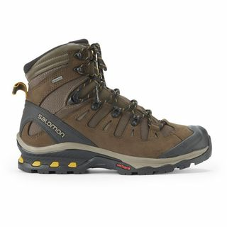 Quest 4D 3 GTX Hiking Boots