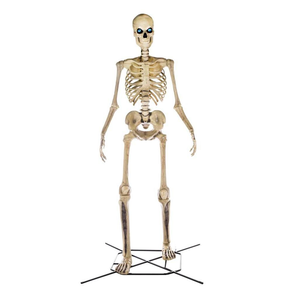 The 12 Foot Tall Skeletons From Home Depot Are The New Heroes Of Halloween Sfchronicle Com