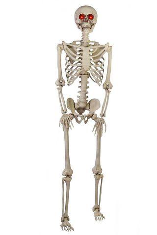 5-Foot Skeleton