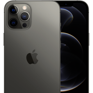 iPhone 12 Pro Max (256 GB)