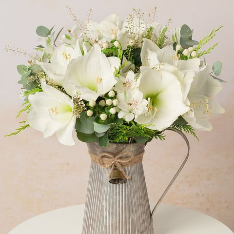 17 Christmas Flowers To Buy 2020 Christmas Flowers Delivery