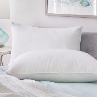 Plush Beds Hotel Chamber Down & Feather Pillow