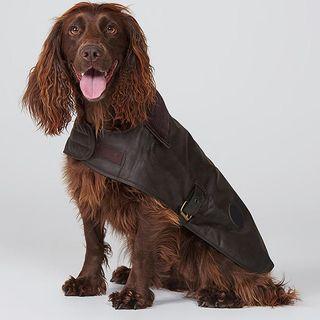 Barbour Waxed Dog Coat, Dark Brown