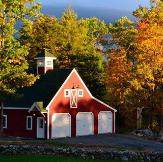 Anderson Hill Tree Farm