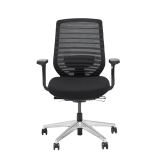 Branch Ergonomic Chair