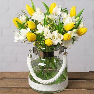 Fresie e Tulipani