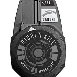 Hidden Kill Mouse Trap 4-Pack
