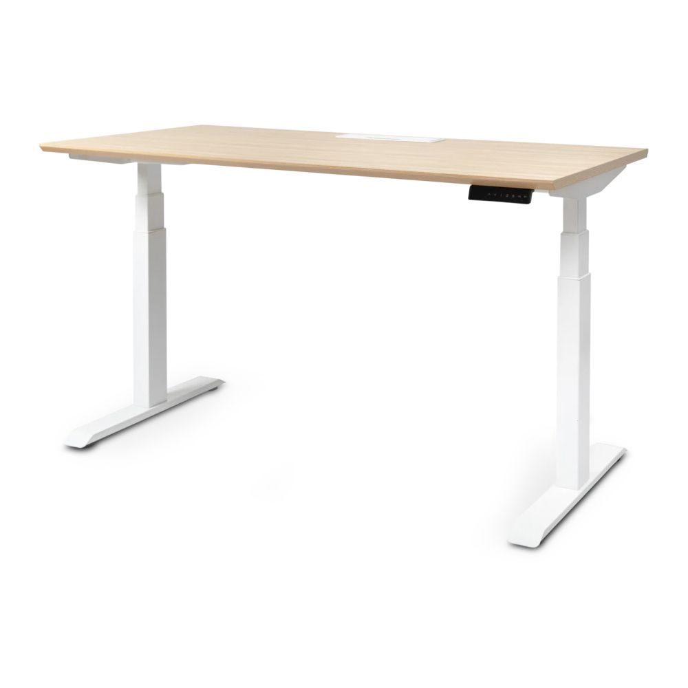 8 Best Standing Desks of 2021 - Standing Desk Reviews