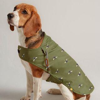 Olive green waxed dog coat