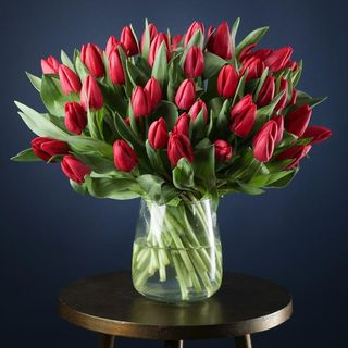 50 Red Tulips
