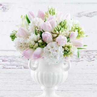 Tulipani Giacinti