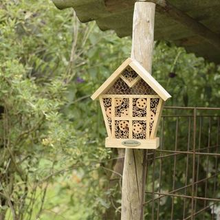 National Trust CJ Wildlife Apex Insect House