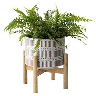 Ceramic Plant Pot with Wood Stand