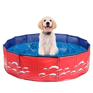 Delicacy foldable paddling pool for dogs