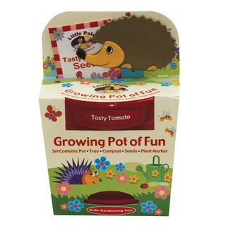 Grow your own tasty kids' tomatoes with hedgehog plant marker