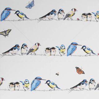 Bird Song Day Wallpaper