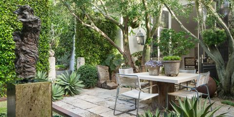 Plant, Table, Furniture, Flowerpot, Outdoor table, Outdoor furniture, Coffee table, Shrub, Garden, Trunk,
