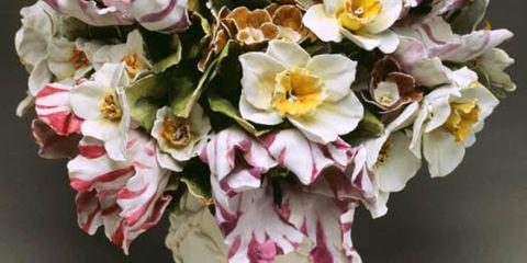 Petal, Yellow, Flower, Pink, Flowering plant, Terrestrial plant, Spring, Blossom, Floristry, Pollen,