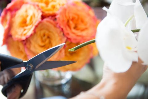 Petal, Flower, Kitchen utensil, Cutlery, Flowering plant, Spoon, Nail, Peach, Cut flowers, Artificial flower,