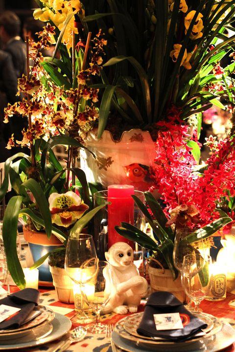 orchiddinnerRollins