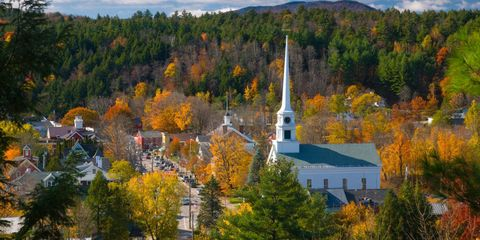 Leaf, Tree, Deciduous, Spire, Steeple, Autumn, Biome, Tower, Place of worship, Chapel,
