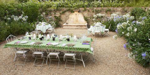 Plant, Tablecloth, Plant community, Furniture, Garden, Table, Petal, Shrub, Linens, Outdoor table,