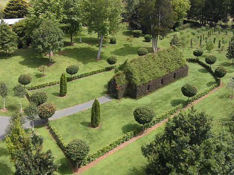 Plant, Shrub, Garden, Plant community, Landscape, Hedge, Land lot, Evergreen, Groundcover, Landscaping,