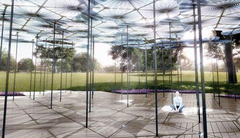Shade, Garden, Iron, Transparent material, Botanical garden,