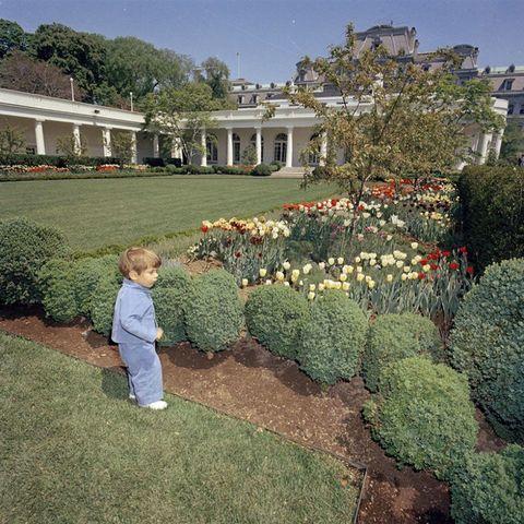 Explore The White House Rose Garden Through Jackie Kennedy Onassis S Eyes