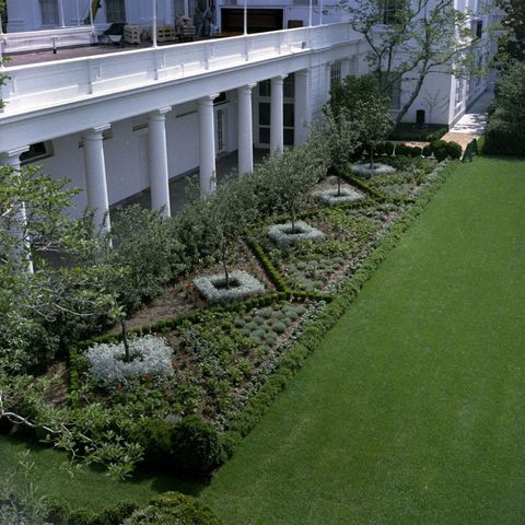 The Finished Rose Garden In June Of 1962 Photo Robert Knudsen White House Photographs John F Kennedy Presidential Library And Museum Boston