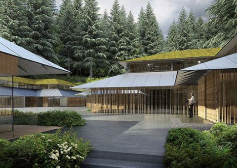 Roof, Shade, Shrub, Garden, Walkway, Conifer, Yard, Landscaping, Village, Courtyard,