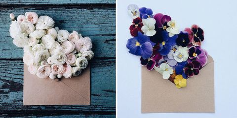 Petal, Blue, Flower, Purple, Cut flowers, Violet, Flowering plant, Flower Arranging, Lavender, Floral design,