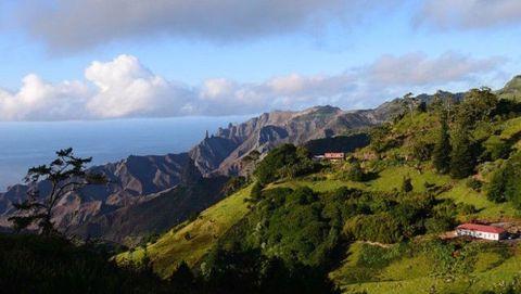 Vegetation, Mountainous landforms, Nature, Natural landscape, Highland, Hill, Landscape, Mountain range, Mountain, Terrain,