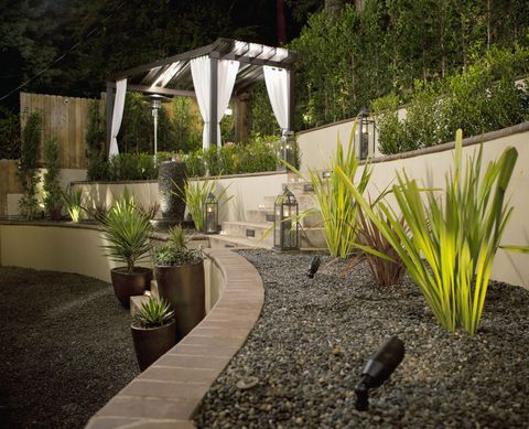 Plant, Flowerpot, Garden, Shrub, Grass family, Houseplant, Flowering plant, Shade, Backyard, Pergola,