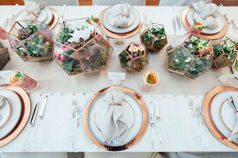 Serveware, Dishware, Porcelain, Ceramic, Tableware, Plate, earthenware, Dish, Pottery, Platter,