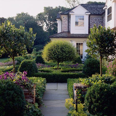 Window, Plant, Shrub, Garden, Property, Tree, House, Residential area, Home, Real estate,